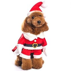 Disfraz Papá Noel, mascota (perro)