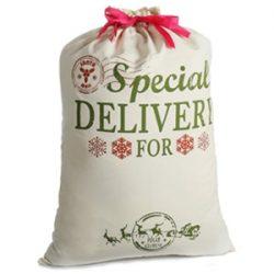 Saco de Santa Claus con texto. Special Delivery for...
