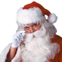 Set de barba y peluca de Santa Claus