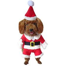 Disfraces para mascotas de Santa Claus